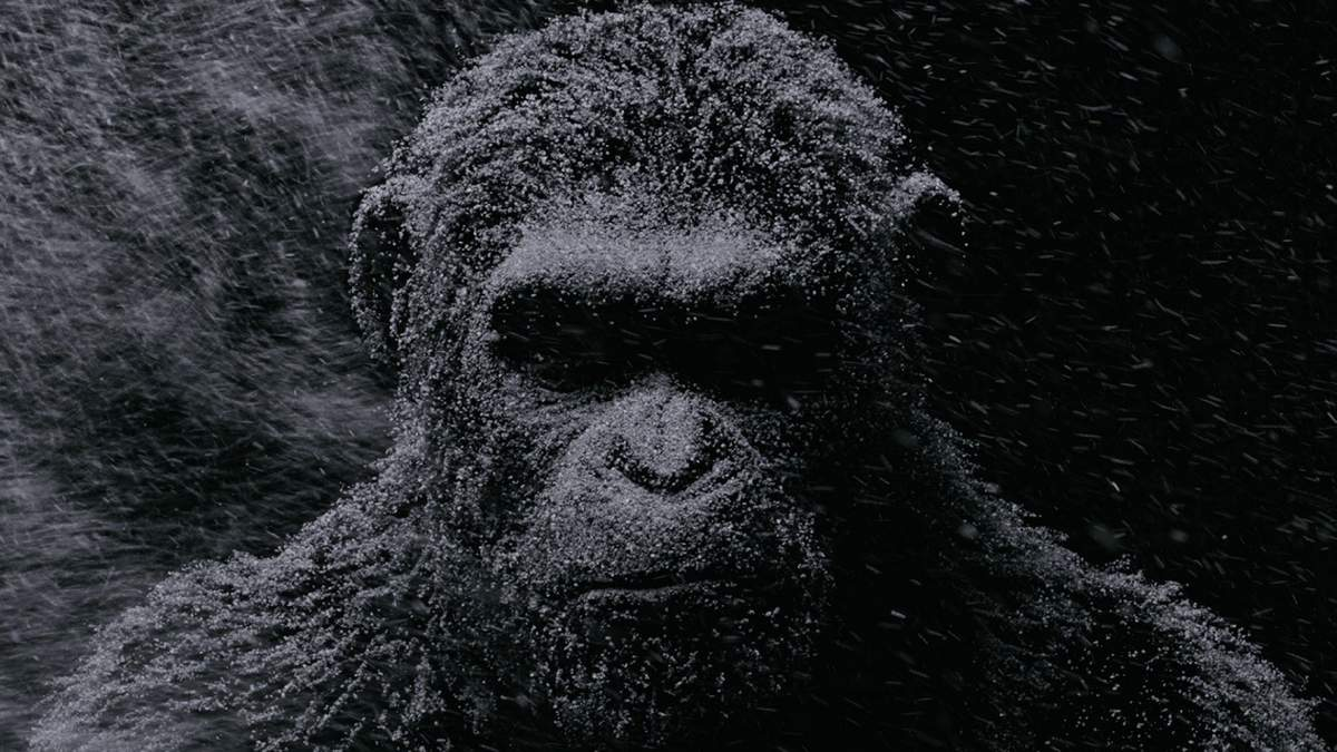 Caesar (Andy Serkis), the leader of the apes, finds himself once again battling humans in War for the Planet of the Apes. Photograph copyright Twentieth Century Fox
